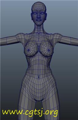 Maya模型me22849_nb36484_w256_h390_x的图片