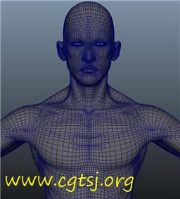 Maya模型me23298_nb37034_w256_h283_x的图片